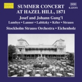 covers/531/summer_concert_at_hazel_h_1101111.jpg