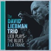 covers/534/lieb_plays_the_blues_a_1109773.jpg