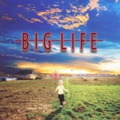covers/542/big_life_1130794.jpg
