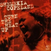 covers/549/turn_the_heat_up_1144153.jpg