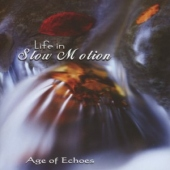covers/550/life_in_slow_motion_1149168.jpg