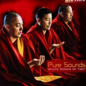 covers/551/pure_sounds_1152081.jpg
