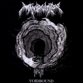 covers/551/voidbound_unearthed_1150243.jpg
