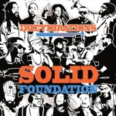 covers/559/solid_foundation_1163027.jpg