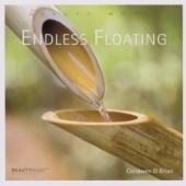 covers/579/endless_floating_1168348.jpg