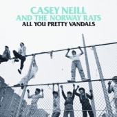 covers/588/all_you_pretty_vandals_1192814.jpg