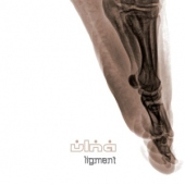 covers/588/ligment_1194181.jpg