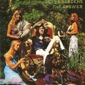 covers/589/answer_2_1196432.jpg