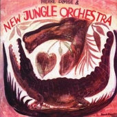 covers/591/and_new_jungle_orchestra_1202492.jpg