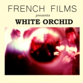 covers/597/white_orchid_1235888.jpg