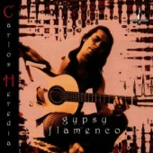 covers/599/gypsy_flamenco_1241818.jpg