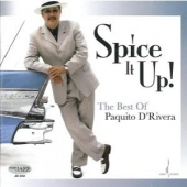 covers/599/spice_it_up_best_of_1241828.jpg