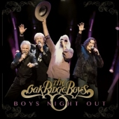 covers/601/boys_night_out_1251585.jpg