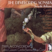 covers/617/developing_sonata_1280384.jpg