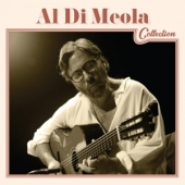 covers/633/al_di_meola_collection_873576.jpg