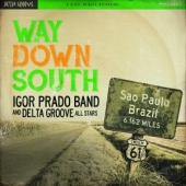 covers/633/way_down_south_873038.jpg