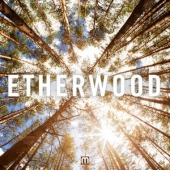 covers/650/etherwood_977876.jpg