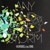 covers/665/any_kind_of_storm_horse_764694.jpg
