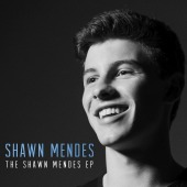 covers/666/shawn_mendes_mende_786933.jpg