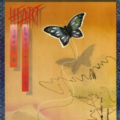 covers/667/dog_butterfly_1354261.jpg