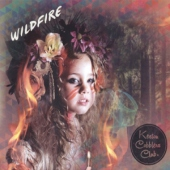 covers/675/wildfire_lpcd_12in_1370914.jpg