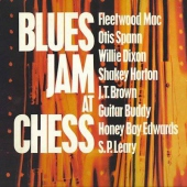 covers/676/blues_jam_in_chicago_1_r_11109.jpg