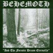 covers/677/and_the_forests_dream_ete_908620.jpg
