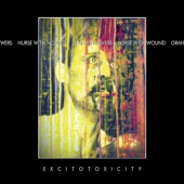 covers/677/excitotoxicity_1237678.jpg