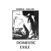 covers/678/domestic_exile_collected_1345996.jpg