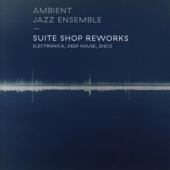 covers/688/suite_shop_reworks_1336525.jpg