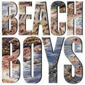 covers/690/beach_boys_hq_1336503.jpg