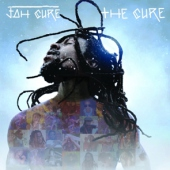 covers/692/the_cure_12in_1389268.jpg