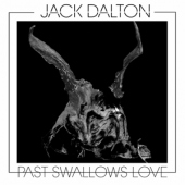 covers/696/past_swallows_love_1391919.jpg