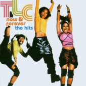 covers/697/now__forever__the_hits_tlc_7832.jpg