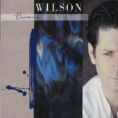 covers/701/brian_wilson_expanded_edition_1357679.jpg