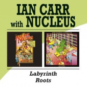 covers/706/labyrinthroots_1156448.jpg
