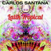 covers/723/latin_tropical_1412534.jpg
