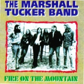 covers/726/fire_on_the_mountain_903531.jpg