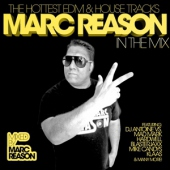 covers/729/marc_reason_in_the_mix_1386271.jpg