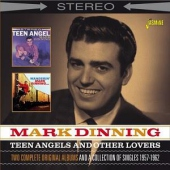 covers/729/teen_angels_other_1346345.jpg
