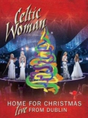 covers/733/home_for_christmaslive_584680.jpg
