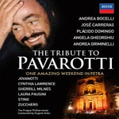 covers/735/the_tribute_to_pavarotti_372429.jpg