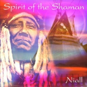 covers/737/spirit_of_the_shaman_1041603.jpg