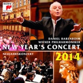 covers/743/new_years_concert_2014_626275.jpg
