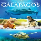 covers/746/galapagos_867024.jpg