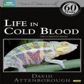 covers/746/life_in_cold_blood_1115441.jpg