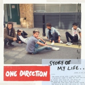 covers/748/story_of_my_life_2tr_787066.jpg
