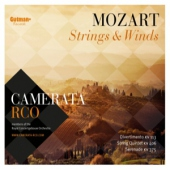 covers/756/mozart_strings_winds_1436381.jpg
