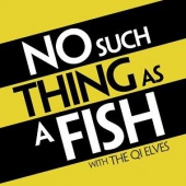 covers/757/no_such_thing_as_a_fish_1444753.jpg