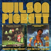 covers/759/pickett_in_the_1438886.jpg